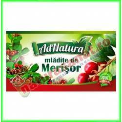 Ceai Merisor Mladite 20 plicuri - Ad Natura - www.naturasanat.ro