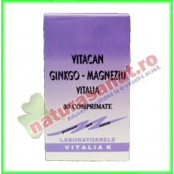 Vitacan Ginkgo Magneziu 30...