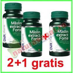 Maslin Extract Forte 60 capsule PROMOTIE 2+1 GRATIS - DVR Pharm