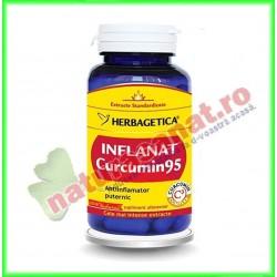 Inflanat Curcumin 95 60...