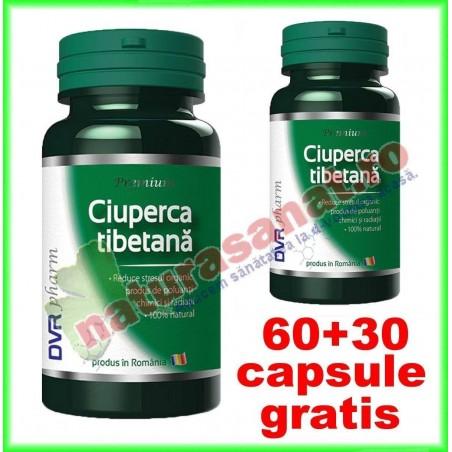 Ciuperca tibetana PROMOTIE 60+30 capsule GRATIS - DVR Pharm