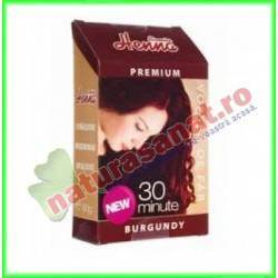 Henna Premium Burgundy 60 g...