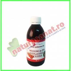 Elixir Pulmonar din Muguri...