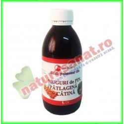 Elixir Pulmonar din Muguri de...