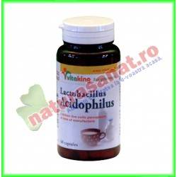 Acidophilus 60 capsule - Vita King