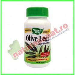 Olive Leaf (frunze de maslin) 60 capsule - Nature's Way - Secom