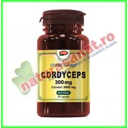 Cordyceps 300mg 30 capsule - Cosmo Pharm