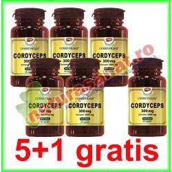 Cordyceps 300mg 60 capsule PROMOTIE 5+1 GRATIS - Cosmo Pharm