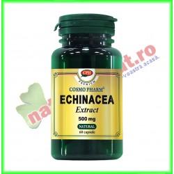 Echinacea Extract 500 mg 60 capsule - Cosmo Pharm
