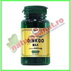 Ginkgo Max Extract 120 mg 60 capsule - Cosmo Pharm
