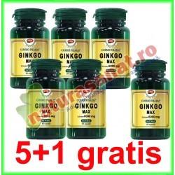 Ginkgo Max Extract 120 mg 60 capsule PROMOTIE 5+1 GRATIS - Cosmo Pharm