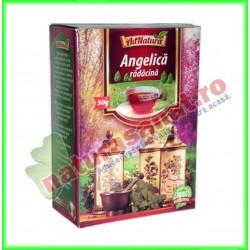 Ceai Angelica Radacina 50 g - Ad Natura - Adserv