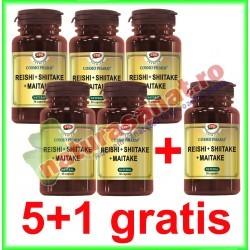 Reishi + Shiitake + Maitake 30 capsule PROMOTIE 5+1 GRATIS - Cosmo Pharm