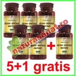 Reishi + Shiitake + Maitake 60 capsule PROMOTIE 5+1 GRATIS - Cosmo Pharm