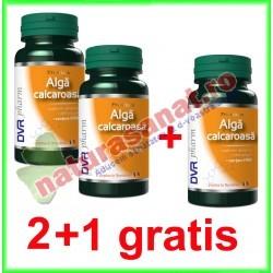 Alga Calcaroasa 60 capsule PROMOTIE 2+1 GRATIS - DVR Pharm