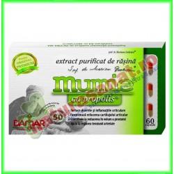 Rasina Mumie cu propolis 60 capsule (extract purificat) - Damar General Trading