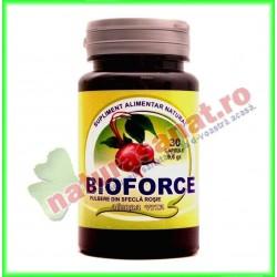 Bioforce Pulbere din Sfecla...