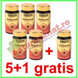 Echinacea 500 mg 60 capsule PROMOTIE 5+1 GRATIS - Only Natural - Co&Co Consumer - www.naturasanat.ro