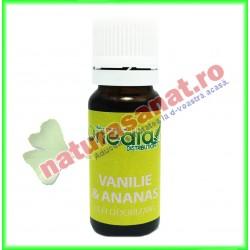 Vanilie si Ananas Ulei Odorizant 10 ml - Onedia Distribution - www.naturasanat.ro