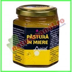 Pastura in miere 200 ml - Apicolscience - www.naturasanat.ro