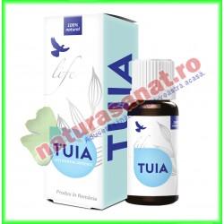 Tuia Ulei Volatil Esential 10 ml - Bionovativ - www.naturasanat.ro