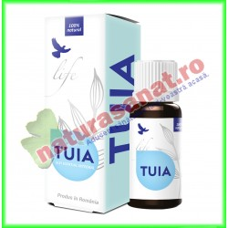 Tuia Ulei Volatil Esential Integral 10 ml - Bionovativ - www.naturasanat.ro
