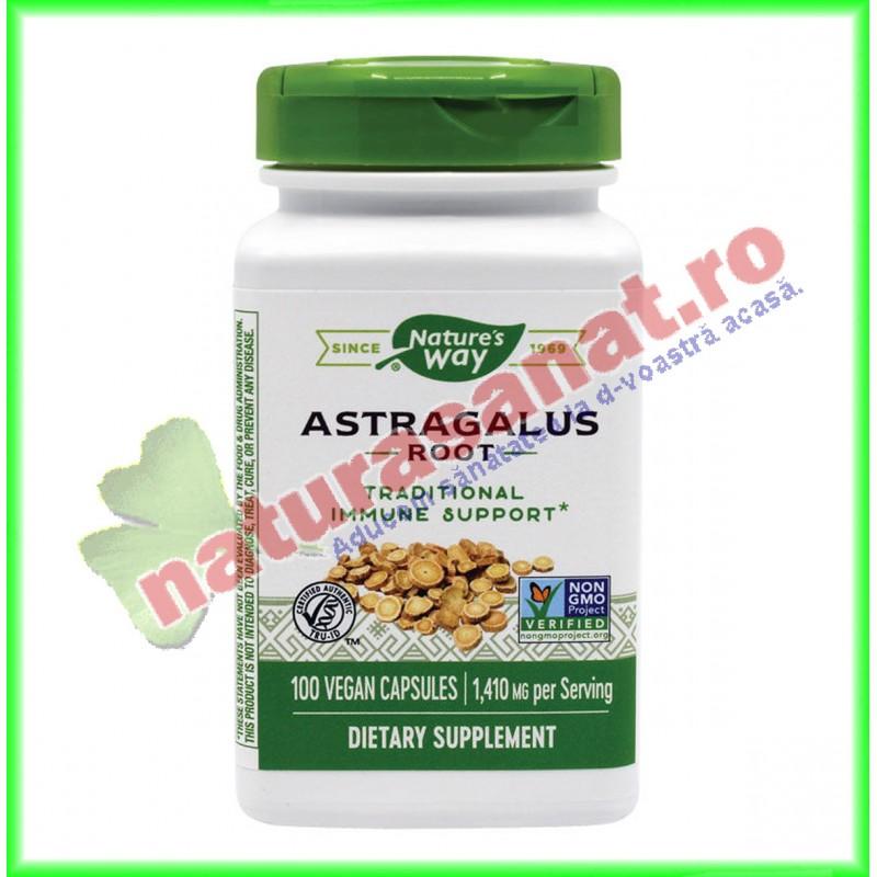 Astragalus 100 capsule - Nature's Way - Secom - www.naturasanat.ro