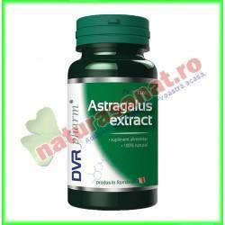 Astragalus Extract 30 capsule - DVR Pharm - www.naturasanat.ro