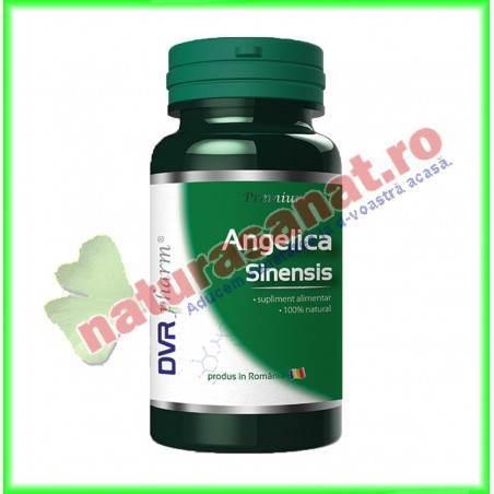 Angelica Sinensis 30 capsule - DVR Pharm - www.naturasanat.ro