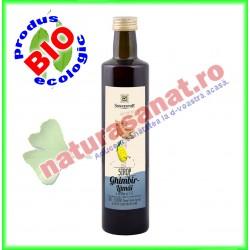 Sirop Bio Eco Ghimbir - Lamai (fara zahar) 500 ml - Sonnentor - www.naturasanat.ro