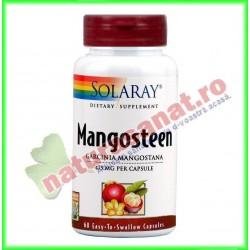Mangosteen Extract 500mg 60...
