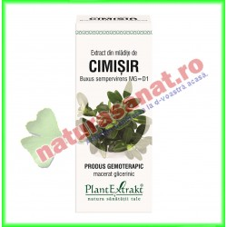 Extract din Mladite de Cimisir 50 ml - Plantextrakt - www.naturasanat.ro