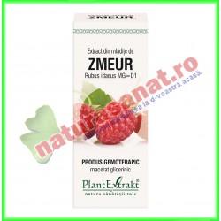Extract din mladite de zmeur - PlantExtrakt - www.naturasanat.ro