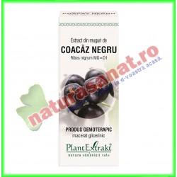 Extract din muguri de coacaz negru 50ml - PlantExtrakt - www.naturasanat.ro