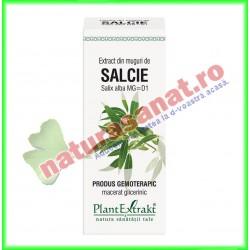 Extract din muguri de salcie (Salix alba gemme) 50ml PlantExtrakt - www.naturasanat.ro