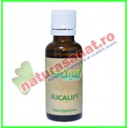 Eucalipt Ulei Esential 30 ml - Onedia - www.naturasanat.ro