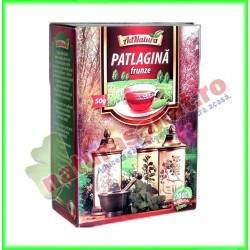 Ceai Patlagina Frunze 50 g - Ad Natura