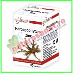 Harpagophytum & Zinc 30 capsule - Farmaclass - www.naturasanat.ro