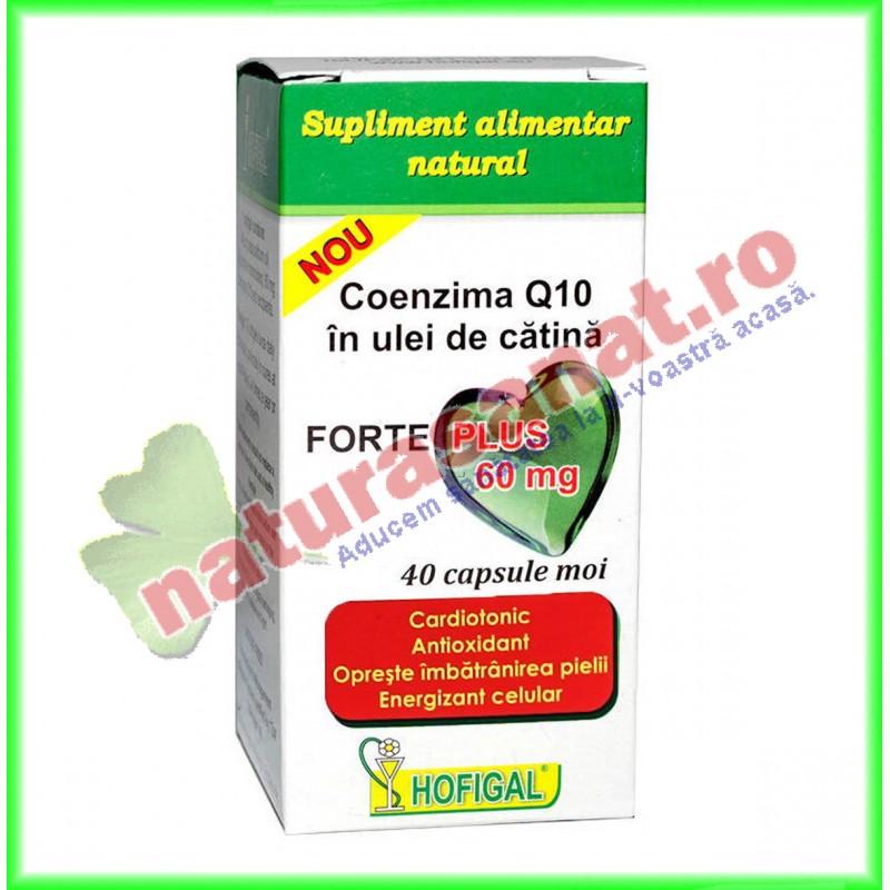 Coenzima Q10 in Ulei de Catina Forte Plus 60 mg 40 capsule - Hofigal - www.naturasanat.ro
