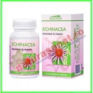 Echinacea Forte 60 comprimate - Dacia Plant