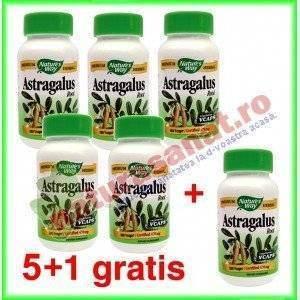 PROMOTIE Astragalus 100 capsule 5+1 gratis - Nature's Way