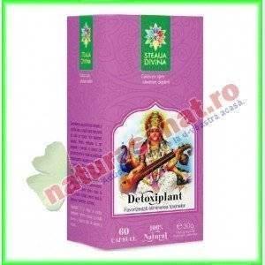 Detoxiplant 60 capsule - Santo Raphael - Steaua Divina